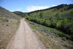 Strada nella regione selvaggia dell'Oregon fotografie stock