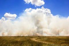 Strada nella savana nei precedenti delle nuvole e del fumo Fotografie Stock