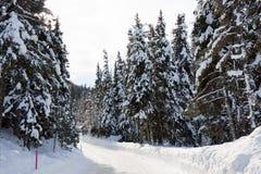 Strada nella tempesta della neve Fotografia Stock