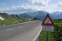Strada nelle alpi Fotografie Stock Libere da Diritti