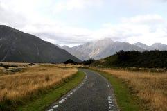 Strada nelle alpi del sud, Nuova Zelanda Fotografie Stock Libere da Diritti
