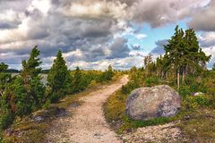 Strada nelle dune del Baltico fotografia stock libera da diritti