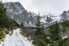 Strada nelle montagne Fotografia Stock Libera da Diritti