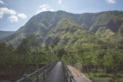 Strada nelle montagne del villaggio di Amed, Bali, Indonesia Fotografia Stock