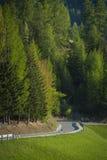Strada nelle montagne della dolomia, Italia immagini stock