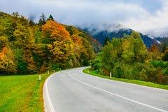 Strada nelle montagne, Slovenia, sanguinata, Bohinj Vista scenica delle foreste e delle colline autunnali variopinte Immagine Stock Libera da Diritti
