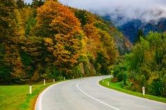 Strada nelle montagne, Slovenia, sanguinata, Bohinj Vista scenica delle foreste e delle colline autunnali variopinte Fotografia Stock Libera da Diritti