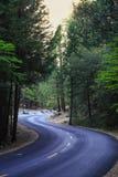 Strada nera in foresta in parco nazionale di Yosemite Fotografia Stock