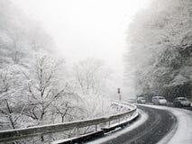 Strada in neve Fotografie Stock