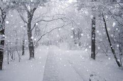 Strada in neve Immagini Stock