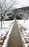 Strada in neve Fotografia Stock