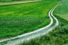 Strada non asfaltata Immagine Stock