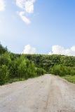 Strada non asfaltata attraverso la foresta fotografia stock libera da diritti