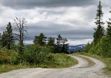 Strada non asfaltata attraverso un paesaggio rurale in Norvegia Immagini Stock