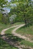 strada non asfaltata da parte a parte fotografie stock libere da diritti