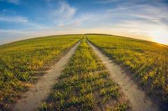 Strada non asfaltata del paesaggio in un campo di semina a distorsione dell'occhio di pesce di tramonto fotografia stock libera da diritti