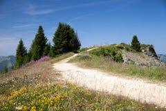 Strada non asfaltata della montagna in alpi francesi Fotografia Stock Libera da Diritti