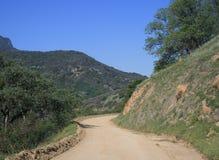 Strada non asfaltata della sequoia Fotografia Stock