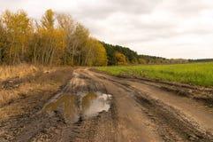 Strada non asfaltata dopo pioggia Immagine Stock Libera da Diritti