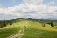 Strada non asfaltata e agricoltore di azionamento con il carretto del cavallo sotto il cielo blu Paesaggio rurale Fotografie Stock Libere da Diritti