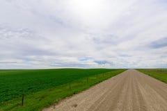 Strada non asfaltata lunga all'orizzonte Fotografie Stock Libere da Diritti