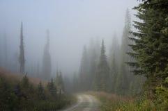 Strada non asfaltata nebbiosa Fotografia Stock