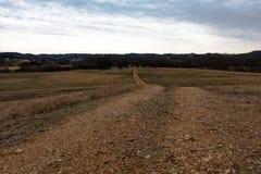 Strada non asfaltata negli appalachi rurali Immagine Stock