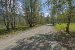 Strada non asfaltata nel Altai montagnoso, Russia Fotografia Stock Libera da Diritti