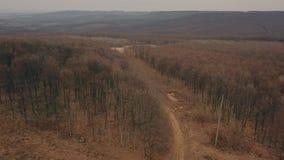 Strada non asfaltata nella foresta