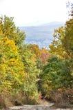 Strada non asfaltata nella foresta di autunno fotografie stock