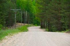 Strada non asfaltata nella foresta mista Immagine Stock