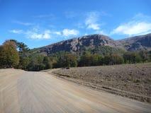 Strada non asfaltata polverosa in araucarias di las del parco nella Patagonia Fotografie Stock