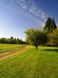 Strada non asfaltata rurale Fotografie Stock