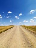 Strada non asfaltata rurale attraverso il pascolo immagine stock libera da diritti