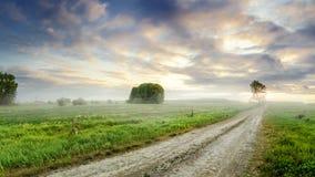 Strada non asfaltata in un campo rurale con nebbia, tramonto di estate, Russia, Ural Fotografia Stock