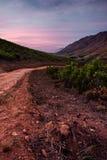 Strada non asfaltata in valle della Provincia del Capo Occidentale Immagine Stock Libera da Diritti