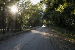 Strada non asfaltata viaggiata Fotografia Stock Libera da Diritti
