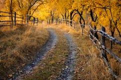 Strada non pavimentata attraverso un frutteto in autunno fotografia stock