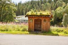 Strada in Norvegia Fotografia Stock