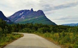 Strada in Norvegia Fotografia Stock Libera da Diritti