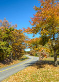 Strada panoramica blu del Ridge Immagine Stock Libera da Diritti