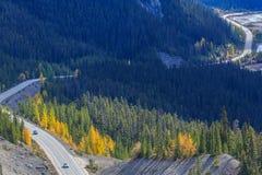 Strada panoramica di Icefields Fotografie Stock Libere da Diritti