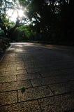 Strada pavimentata in nature Fotografia Stock Libera da Diritti