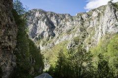 strada pavimentata nel canyon del fiume di Cesalpina, nel parco nazionale di Durmitor, il Montenegro Valle della strada fra la mo immagine stock