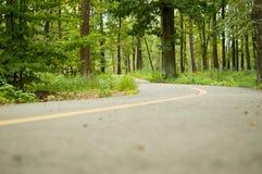 Strada per la bicicletta nel parco di estate Fotografie Stock Libere da Diritti