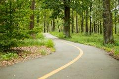 Strada per la bicicletta nel parco di estate Fotografia Stock