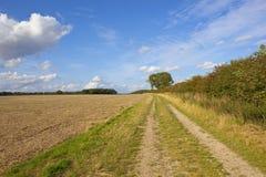 Strada poderale dei wolds di Yorkshire Immagini Stock Libere da Diritti