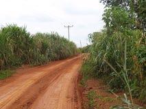 Strada polverosa nel Ghana, Africa Fotografie Stock Libere da Diritti