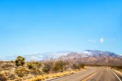Strada principale attraverso un paesaggio del deserto con le montagne ed il fogliame verde Fotografia Stock Libera da Diritti