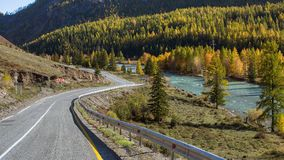 Strada principale in autunno, Altay Mountains, Russia di Chuya nave Fotografia Stock Libera da Diritti